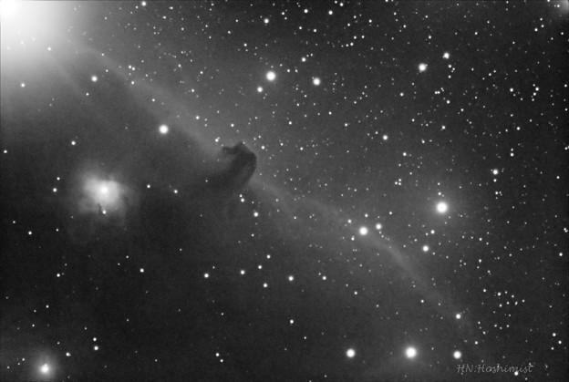 写真: 馬頭星雲Hアルファ