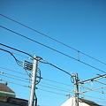写真: 青空と電線