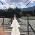 Photos: 吊り橋効果