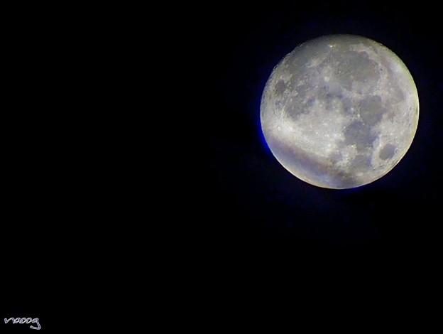 La bella luna
