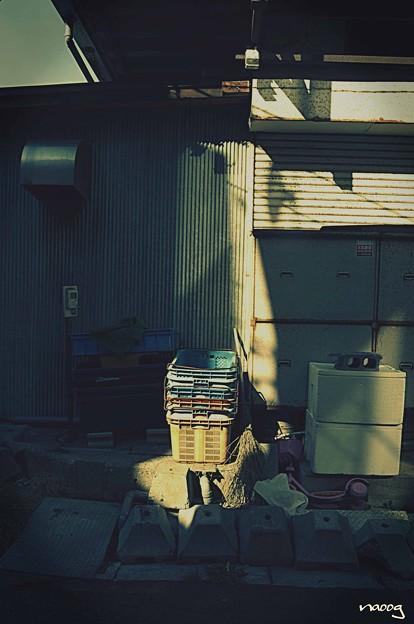 写真: 裏朝市