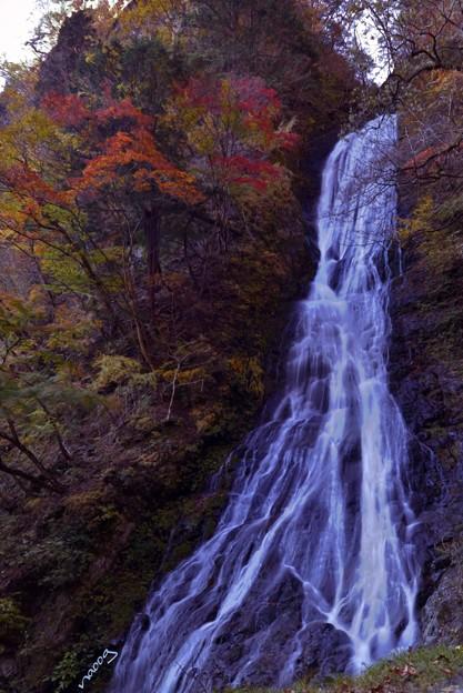 丸神の滝 ~秋色~