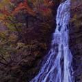 写真: 丸神の滝 ~秋色~