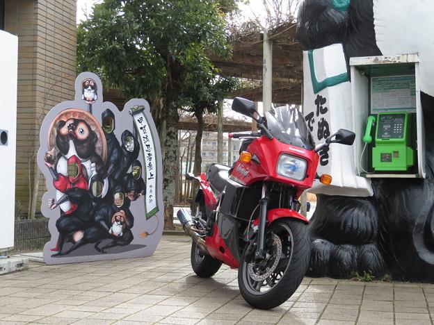 タヌキ忍者とNinja