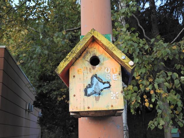 写真: PAの巣箱1