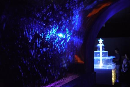サンシャイン水族館 AquaFantasia 入口