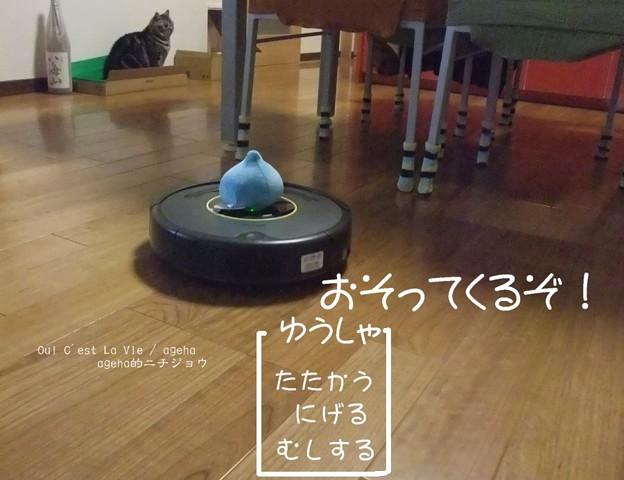 Photos: 猫とルンバとスライムと3