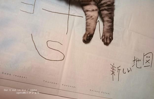 Photos: 新聞を広げると。(新しい地図)