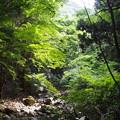 写真: 犬鳴山にて