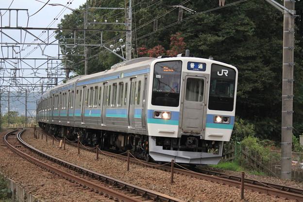 Photos: JR東日本211系