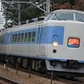 JR東日本189系「ホリデー快速富士山」