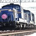 DD51 1102&DD51 1095「トワイライトエクスプレス」