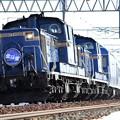 DD51 1083&DD51 1138「北斗星」