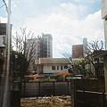 Photos: きのこ畑