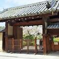 興福寺  本坊