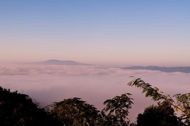 山城大雲海