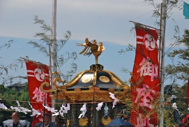 志波彦神社御神輿
