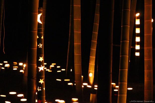 竹灯篭 11