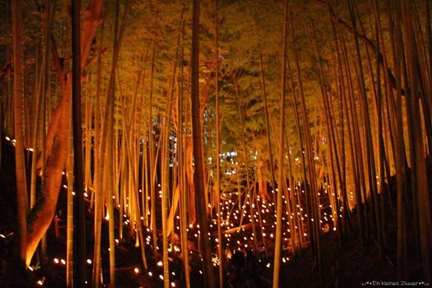 竹灯篭 12