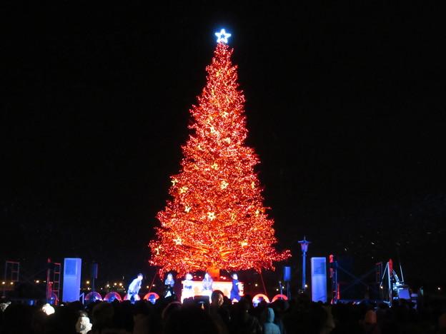 はこだてクリスマスファンタジー 21
