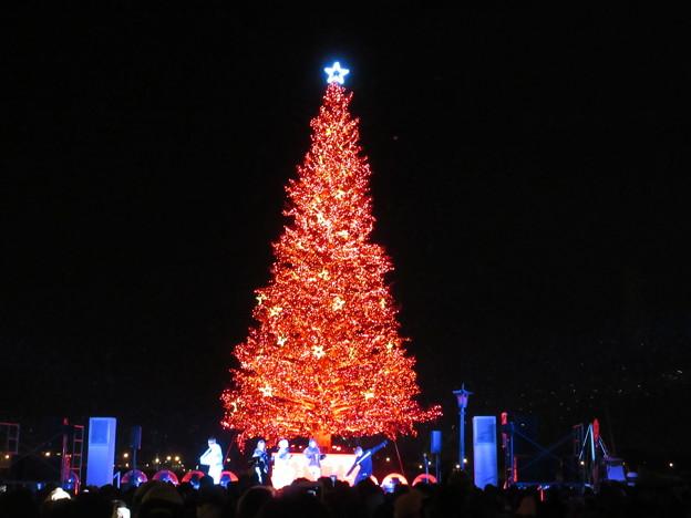 はこだてクリスマスファンタジー 22