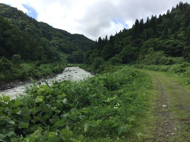 1702-関川1