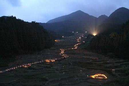 明かりが灯る四谷の千枚田