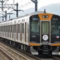 写真: 阪神1000系