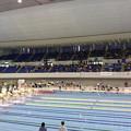 写真: 本日はパラ水泳日本選手権の応援です。