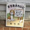 犬糞~総社市