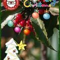 Merry Christmas(^-^)/