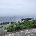 海沿いのカーブ/室戸岬