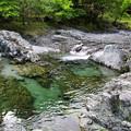 西丹沢・中川(2)