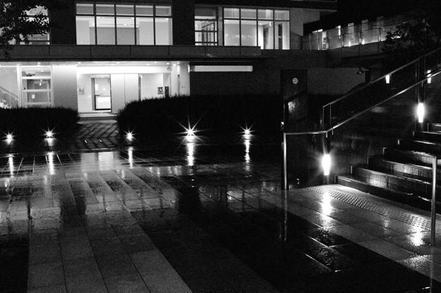 写真: 濡れる街