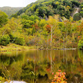 写真: 色付く湖水