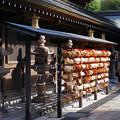 写真: 願い/櫛田神社