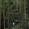写真: 小滝の上の大滝への道
