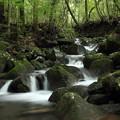 写真: 寒川の渓流
