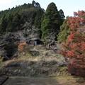 写真: 湯出神社の紅葉
