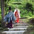 Photos: 熊野古道を歩く