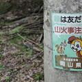 Photos: 友だち