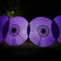 写真: 紫傘