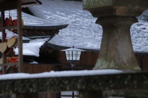 写真: 雪の境内