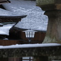 Photos: 雪の境内