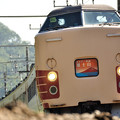 189系「ホリデー快速富士山」