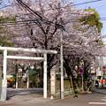 Photos: 鳥居前にて