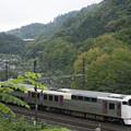 染まり初めの裏高尾と215系高原行き列車