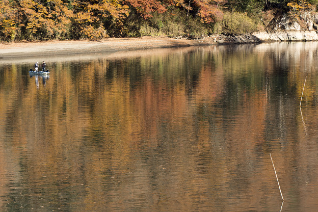 水面に写る晩秋