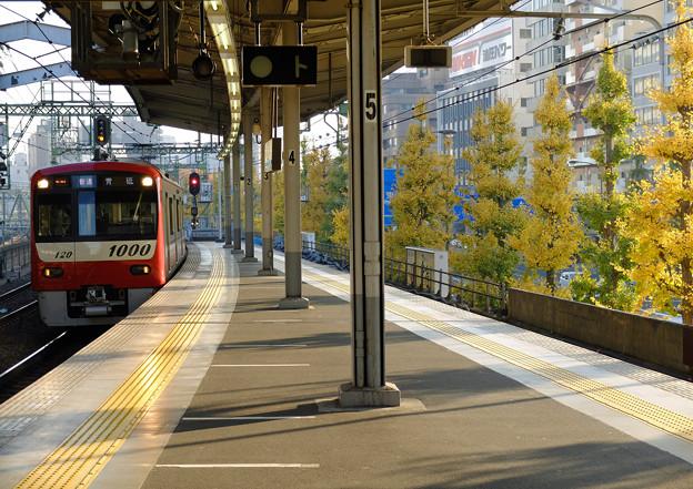 並木沿いの駅