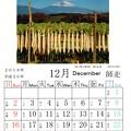 Photos: 富士山093